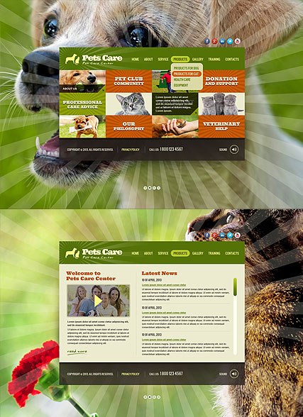 Pet Care Service HTML5 Template